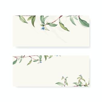 Set botanische hintergrunddesigne