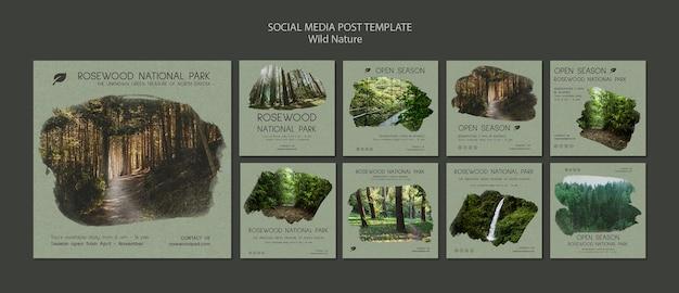 Social media-beitragsschablone des nationalparks rosenholz
