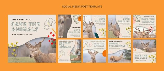 Speichern sie tiere social media post