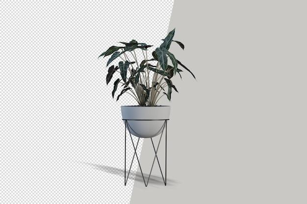 Topfpflanzen blumen in 3d-rendering isoliert