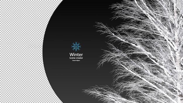 Trockene äste mit schneebeschneidungspfad bedeckt