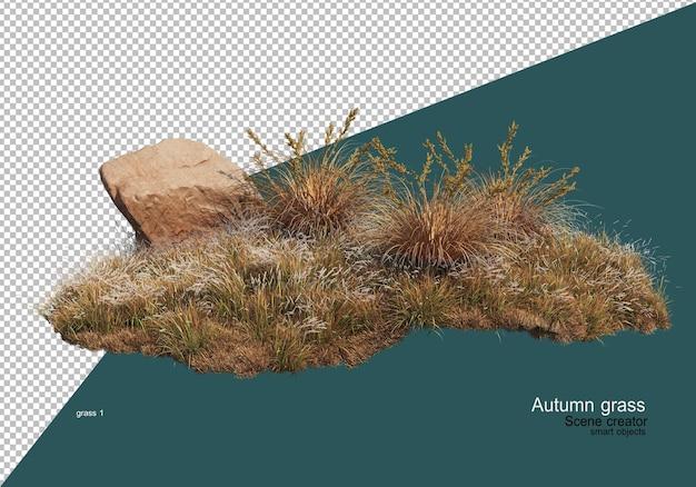 Trockener grasgarten im herbst