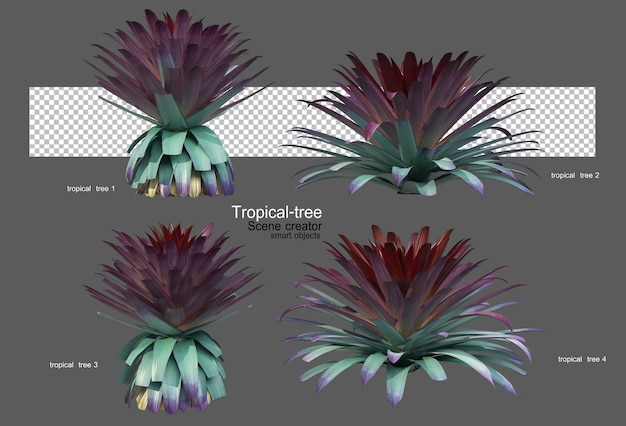 Verschiedene arten von tropischen bäumen