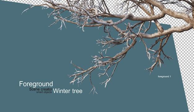 Verschiedene winterbäume design isoliert