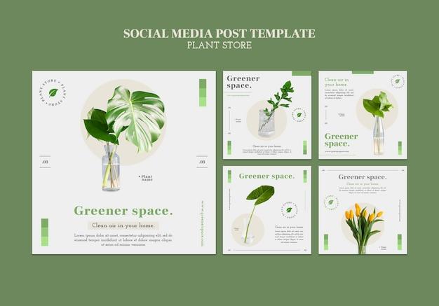 Vorlage für social-media-posts im pflanzenladen