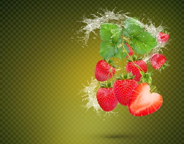 Wasserspritzer auf frischen erdbeeren mit blättern auf grünem hintergrund premium psd