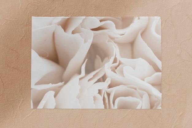 Weiße nelkenblumenkarte auf brauner hintergrundschablone