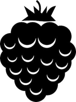 Blackberry frutta