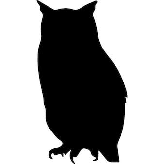 Forma di uccello gufo