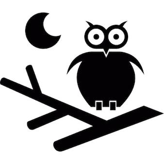 Halloween scena con un gufo su un ramo e la luna
