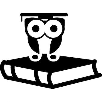 Laurea gufo sulla cima di libro