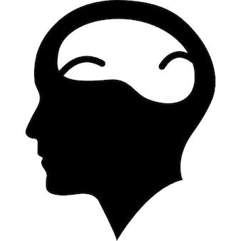 Testa di uomo calvo con il cervello