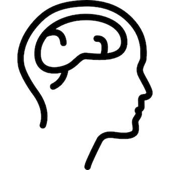 Testa vista laterale maschio con il cervello
