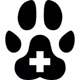 Pata do animal com mais símbolo