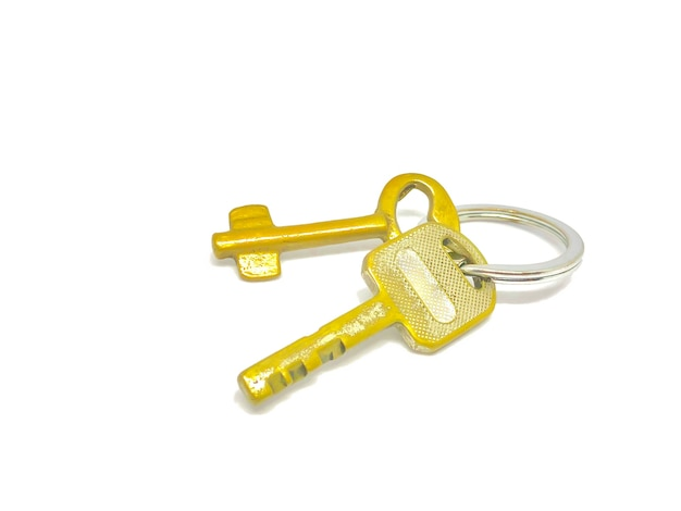 2 types de clés dorées dans l'anneau avec fond.