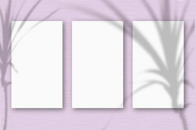 3 feuilles verticales de papier blanc texturé sur fond de table vert rose tendre. maquette avec une superposition d'ombres végétales. la lumière naturelle projette les ombres d'une plante tropicale. orientation horizontale.
