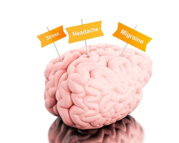 3d cerveau avec des panneaux de diverses douleurs à la tête.