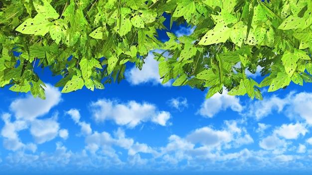 3d rendent des feuilles vertes sur un ciel bleu nuageux