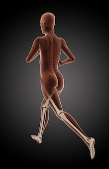 3d render of a female medical running avec les jambes en surbrillance