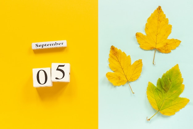 5 septembre et feuilles d'automne jaunes sur fond bleu jaune
