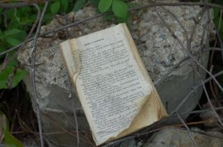 Abandonnés livre