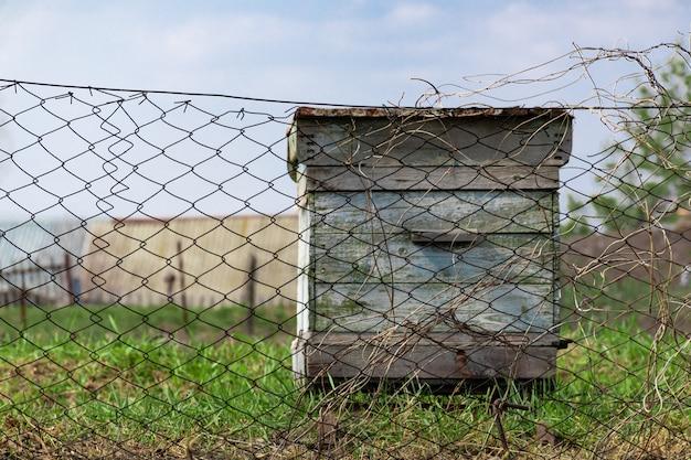 Abeille miel maison. ruche rurale derrière rabitz