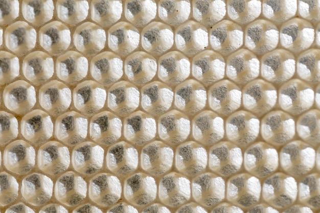 Abeilles nid d'abeilles. cellules cellulaires sur le cadre.