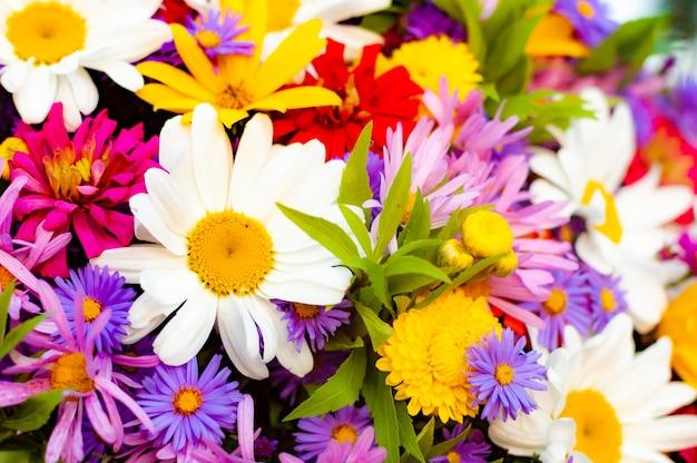 Une abondance de belles fleurs épanouies dans un seul bouquet d'été.