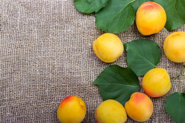Abricots biologiques avec feuilles sur toile de fond avec fond
