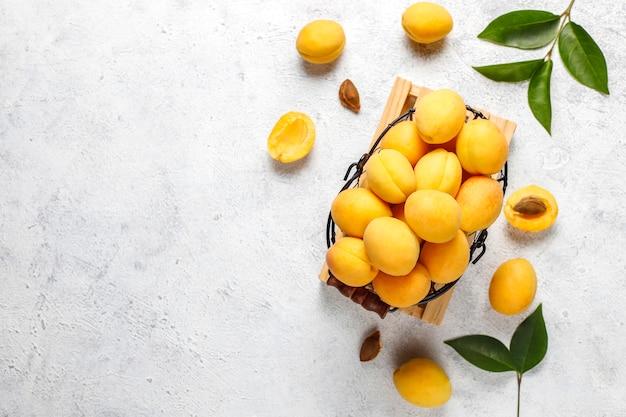 Abricots biologiques frais