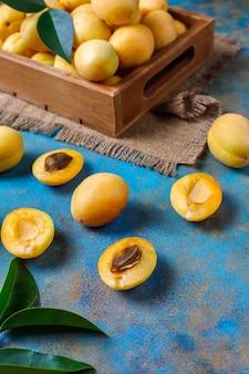Abricots frais bio