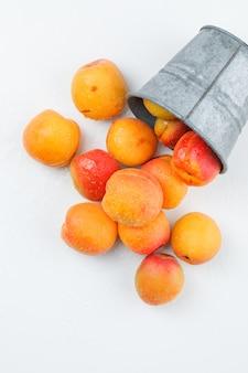 Abricots naturels dans un mini seau. mise à plat.