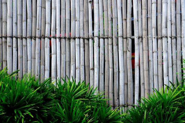 Abstrait bois de bambou