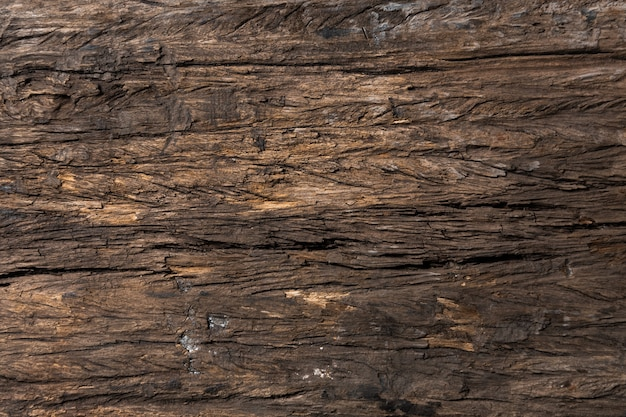 Abstrait en bois texture transparente