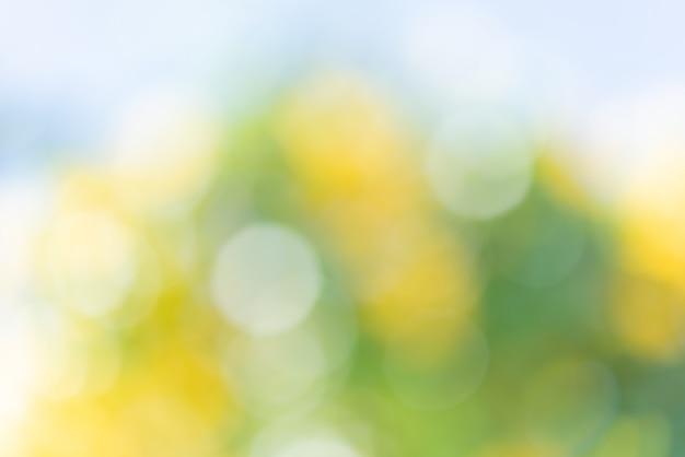 Abstrait défocalisé bokeh coloré vert jaune floue fond