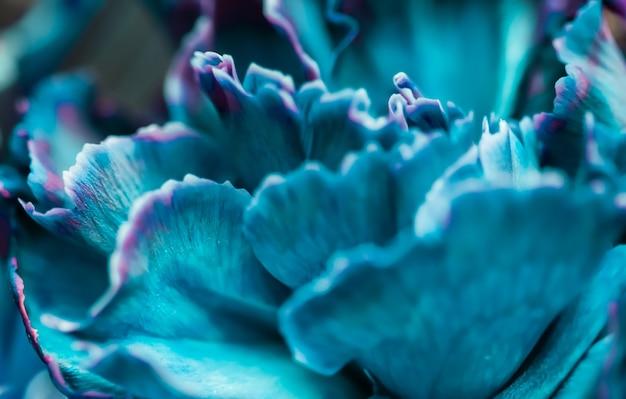 Abstrait floral fond bleu oeillet fleur macro fleurs toile de fond pour la conception de la marque de vacances