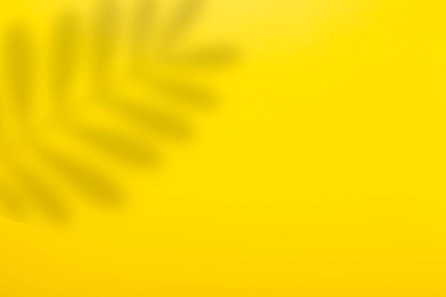 Abstrait fond jaune et ombre d'une feuille d'une plante tropicale.