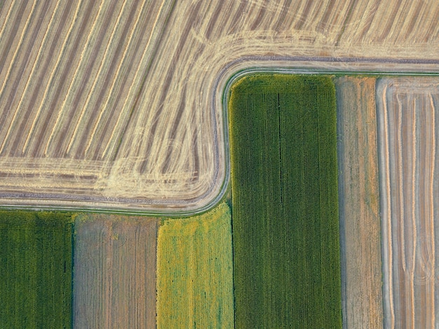 Abstrait géométrique des champs agricoles avec différentes cultures et après la récolte, séparés par la route. une vue plongeante depuis le drone.