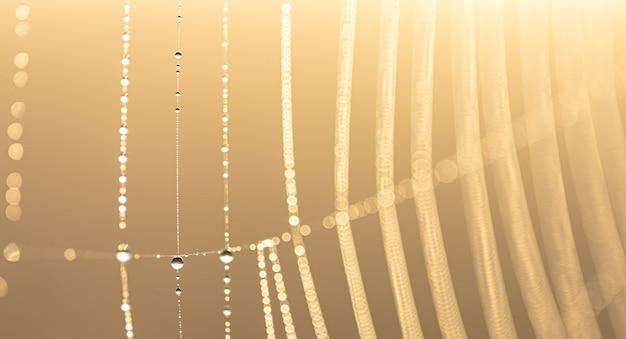 Abstrait naturel avec des gouttes de rosée de cristal sur une toile d'araignée au soleil avec bokeh.