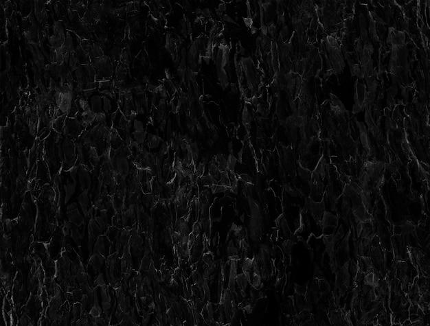 Abstrait noir et blanc est ajusté à partir d'écorce d'arbre