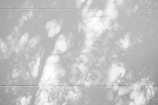 Abstrait noir et blanc textuer de feuille d'ombres sur un mur de béton
