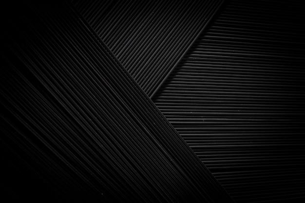 Abstrait noir, de pâtes spaghetti crues, vue du dessus