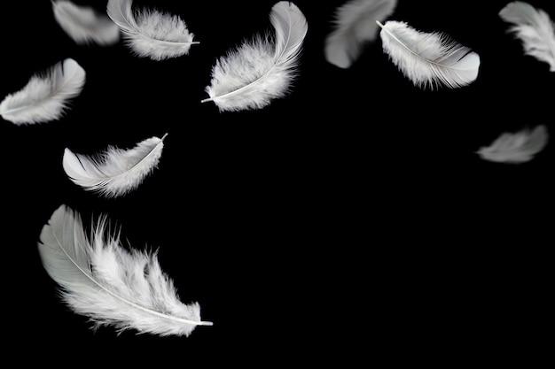 Abstrait de la plume. plume blanche tombant dans le noir.