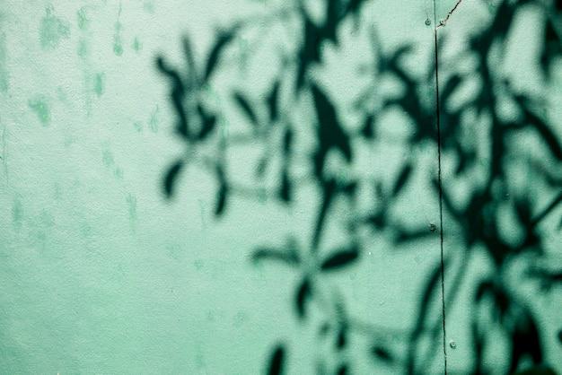 Abstrait textuer de feuille d'ombres sur un mur de béton