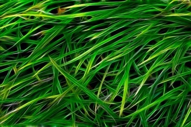 Abstrait texture d'herbe