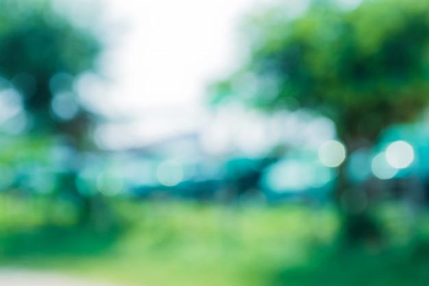 Abstrait vert flou d'arbre vert sur la nature et le bokeh