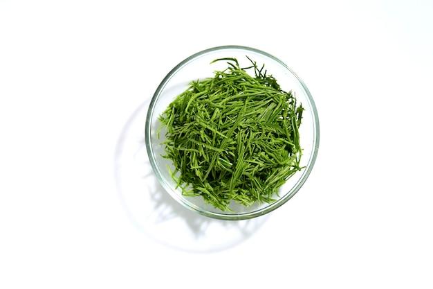 Acacia pennata ou grimper dans un bol en verre