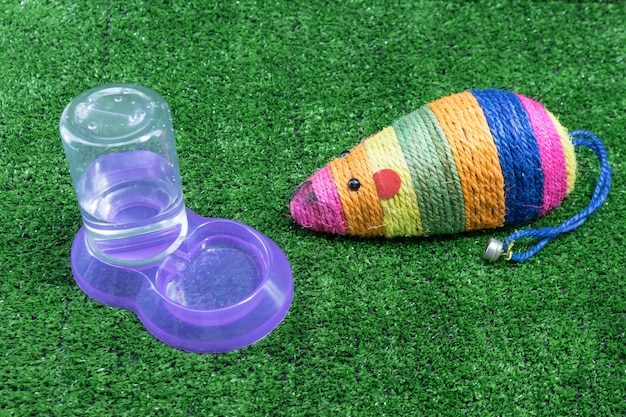 Accessoires pour animaux de compagnie pour chat sur l'herbe.