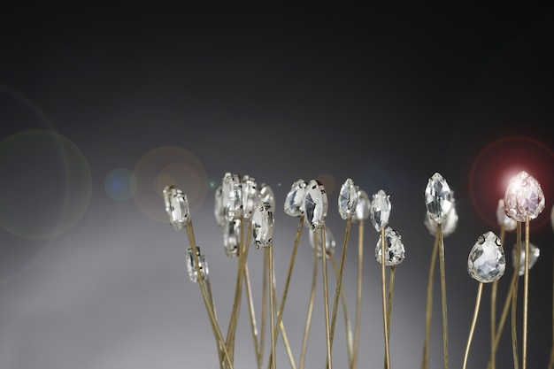 Accessoires pour pierres précieuses de haute valeur couronne, or, diamant, laiton comme champ de fleurs