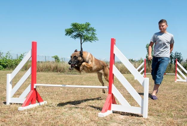 Adolescent et chien en agilité